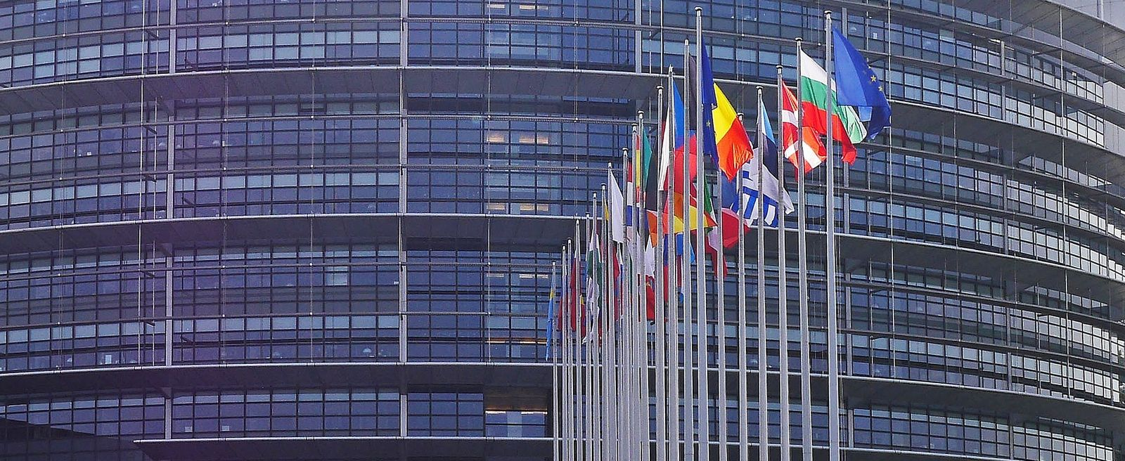 European parliament building with country flags lining front entrance